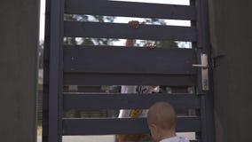 Jeune mère avec ses frères de fils de bébé garçon s'élevant sur une barrière de jardin - scène chaude d'été de couleur de valeurs clips vidéos
