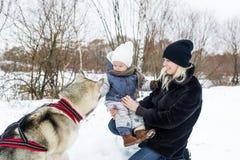 Jeune mère heureuse avec la fille en parc d'hiver avec le chien de chiens de traîneau Photos stock