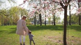 Jeune mère marchant avec son fils d'enfant de bébé garçon en parc sous des arbres de Sakura clips vidéos