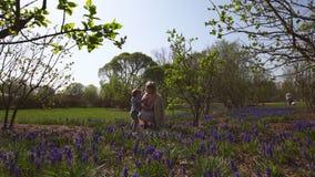 Jeune m?re jouant et parlant avec un fils de b?b? gar?on sur une jacinthe de raisin de champ de muscari au printemps - jour ensol clips vidéos