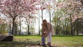 Jeune m?re marchant avec son fils d'enfant de b?b? gar?on en parc sous des arbres de Sakura banque de vidéos