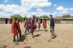 Jeune Maasai Askari faisant une danse sautante traditionnelle avec le touri Photo libre de droits