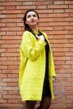 Jeune Madame devant un mur de briques Photos stock