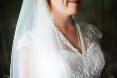Jeune mariée épousant la robe nuptiale de cou de voile Image stock