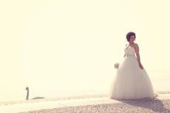 Jeune mariée au bord de la mer Images libres de droits