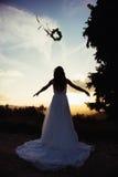Jeune mariée au coucher du soleil, dans la nature Image stock
