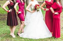 Jeune mariée avec des demoiselles d'honneur sur le parc dans le jour du mariage Photos stock