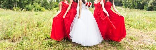 Jeune mariée avec des demoiselles d'honneur sur le parc dans le jour du mariage Images stock
