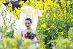 Jeune mariée avec la robe de mariage blanche dans le domaine de fleur de viol Photo stock