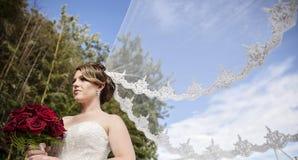 Jeune mariée avec le long voile soufflant en vent Images libres de droits