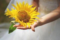 Jeune mariée avec le tournesol image libre de droits