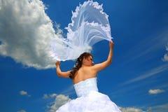 Jeune mariée avec un voile Photos stock