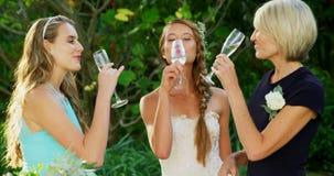 Jeune mariée ayant le champagne avec la mère et la demoiselle d'honneur 4K 4k banque de vidéos