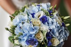 Jeune mariée bleue de bouquet Images libres de droits