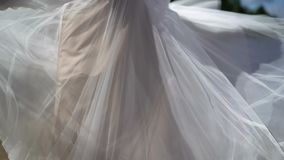 Jeune mariée dans entourer de robe de mariage banque de vidéos