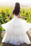 Jeune mariée dans un vignoble, automne Photo stock