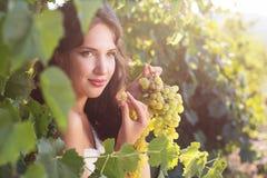 Jeune mariée dans un vignoble, automne Image stock