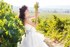 Jeune mariée dans un vignoble, automne Photo libre de droits