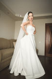 Jeune mariée de luxe au matin de jour du mariage photo libre de droits