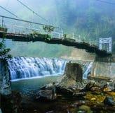 Jeune mariée de suspension à travers la rivière dans la forêt tropicale Photographie stock