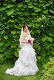 Jeune mariée en nature Photographie stock