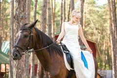 Jeune mariée et cheval Photographie stock