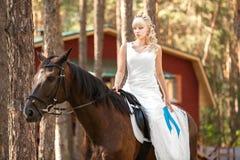 Jeune mariée et cheval Photo libre de droits