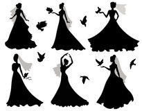 Jeune mariée et oiseaux. Image stock