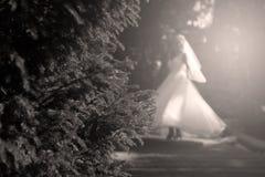 Jeune mariée faisant la pirouette en parc Photos stock