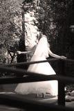 Jeune mariée faisant la pirouette en parc Photographie stock libre de droits