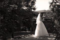 Jeune mariée faisant la pirouette en parc Photo libre de droits