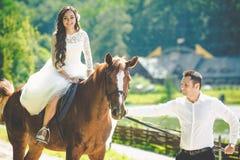Jeune mariée heureuse magnifique élégante de brune sur le cheval et le g élégant Photos libres de droits