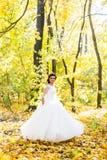 Jeune mariée heureuse sur la forêt d'automne photos stock