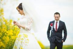 Jeune mariée magnifique élégante de brune avec le bouquet rouge et le gro élégant Image stock