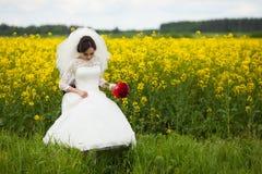 Jeune mariée magnifique élégante de brune avec le bouquet rouge sur le backgro Image libre de droits