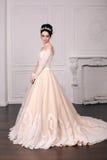 Jeune mariée magnifique avec les cheveux foncés dans la robe de mariage luxuious photo stock