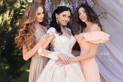 Jeune mariée magnifique dans la robe de mariage luxueuse, posant avec de belles demoiselles d'honneur dans des robes élégantes Image stock