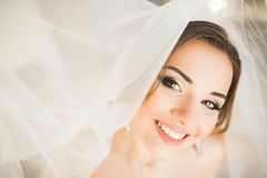 Jeune mariée magnifique dans la robe longue posant et se préparant au visage de cérémonie de mariage dans une chambre photo libre de droits