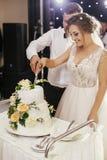 Jeune mariée magnifique et marié élégant coupant ensemble le mariage blanc image libre de droits