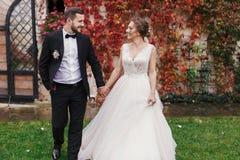 Jeune mariée magnifique et marié élégant tenant des mains et marchant au wa photo libre de droits