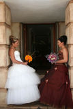 Jeune mariée rectifiée dans le blanc Images libres de droits