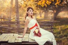 Jeune mariée s'asseyant sur le puits en bois fermé Photographie stock
