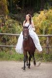 Jeune mariée sur le cheval Images libres de droits