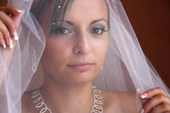 Jeune mariée voilée Photo stock