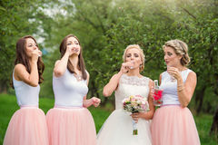 Jeune mariée avec des demoiselles d'honneur Photo stock
