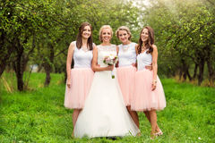 Jeune mariée avec des demoiselles d'honneur Images libres de droits