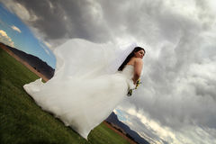 Jeune mariée dans le vent Photo libre de droits