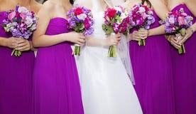 Jeune mariée et Bridemaids Images libres de droits