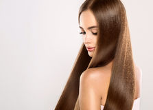 Jeune modèle attrayant avec longtemps, cheveux droits et bruns Photos libres de droits
