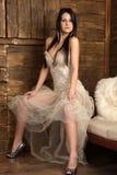 Jeune modèle de brunete Image stock